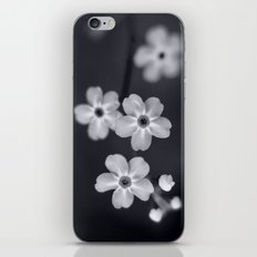 Forget me not BW iPhone & iPod Skin