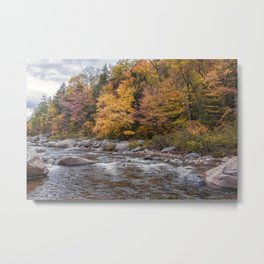 Foliage Creek Metal Print