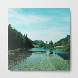 Jordon's Pond Arcadia Metal Print