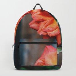 Fiery Backyard Rose Backpack