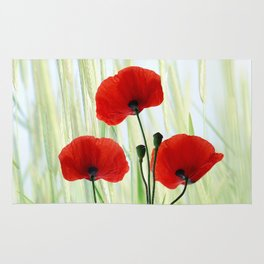 Poppies red 008 Rug