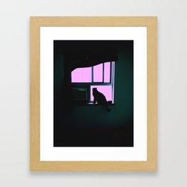 BirdWatch. Cat in the Window Photograph. Framed Art Print
