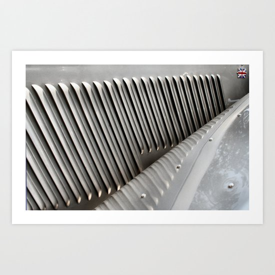 Metal Ribs Art Print