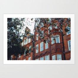 London Blossom Art Print