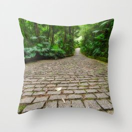 stone path in the forest Throw Pillow