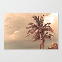Retro Palm Tree Canvas Print