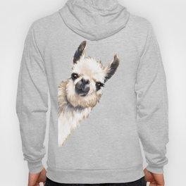 Sneaky Llama Hoody