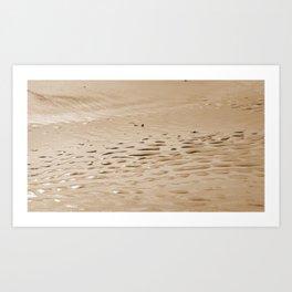 New England Seashore Art Print