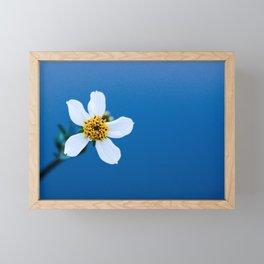 flower photography by Fidel Fernando Framed Mini Art Print