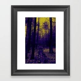Woods stream Framed Art Print