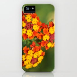 Italian Bloom iPhone Case
