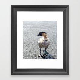 Nene Framed Art Print
