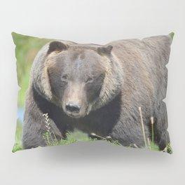 Brown Bear - Alaska Pillow Sham