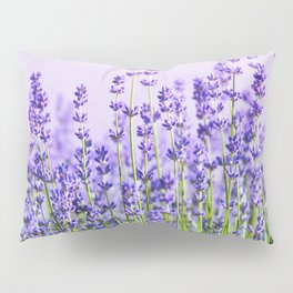 Lavender 15  Pillow Sham