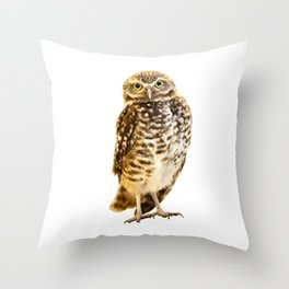 Burrowing Owl 1 Throw Pillow