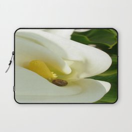Beautiful Calla Flower On Green Natural Background Laptop Sleeve