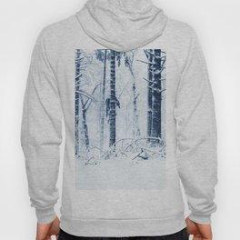 Winter Forest Hoody
