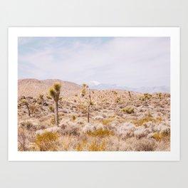 Desert Color - Boho Joshua Tree Photography Art Print