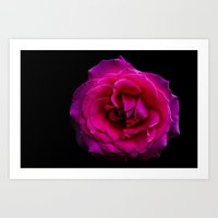 hot pink Art Prints featuring Hot Pink by Jan Victor Gotamco