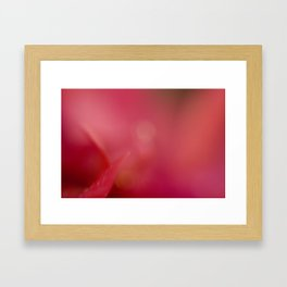 Pink! Framed Art Print