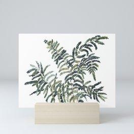 Woodland Fern Botanical Watercolor Illustration Painting Mini Art Print