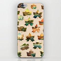 Memory in Leaves iPhone & iPod Skin