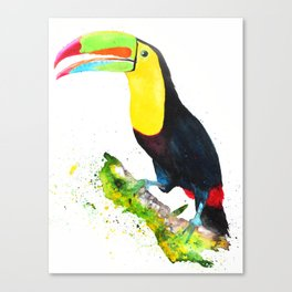 Colors of the Toucan Canvas Print