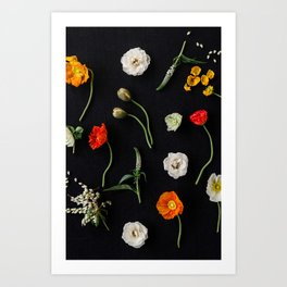 Ash & Poppy Art Print