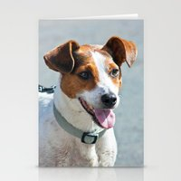 jack russell Stationery Cards featuring Jack Russell by Doug McRae
