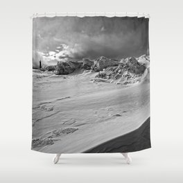 Ice Age Shower Curtain