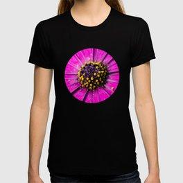 Dimorphotheca T-shirt