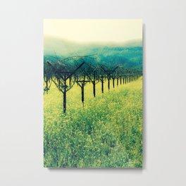Winter Vineyard I - Serenity Metal Print