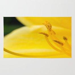 Yellow Beauty Rug