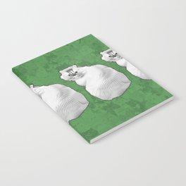 Leia Notebook