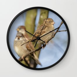 Female  Sparrow Wall Clock