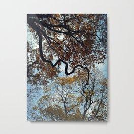 Tree of life. Metal Print