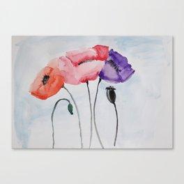 Poppies no 3 Canvas Print