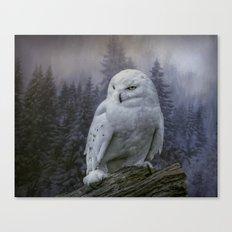 Snowy Owl looking for prey Canvas Print