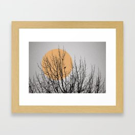 Birds and tree silhouette Framed Art Print