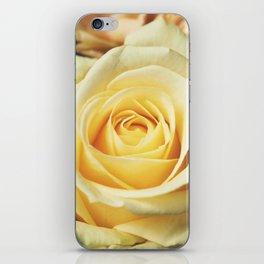 Yellow Roses iPhone Skin
