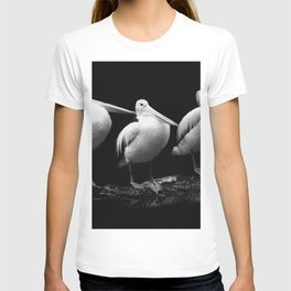 Pelican Trio black and white T-shirt
