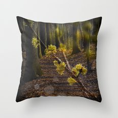 Walking through the forest in early spring Throw Pillow