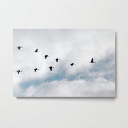 """Flock"" by Murray Bolesta Metal Print"