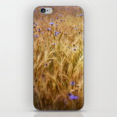 Summer gold iPhone & iPod Skin