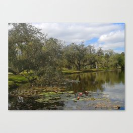 Old Florida Landscape Canvas Print