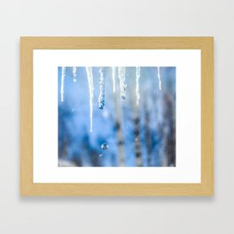 Icicles and drops in a birch grove Framed Art Print