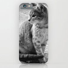 Lloyd- Black and White Cat Photography iPhone 6 Slim Case