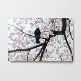 Mastering the sakura Metal Print