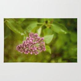Boutons de lilas (Lilac Bud) by Althéa Photo Rug