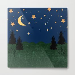 Night Time Landscape Metal Print